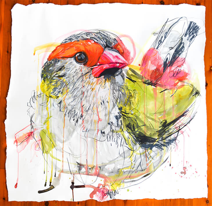 Artwork by Meaghan Potter showing abstract sketch of a Red Brown Finch